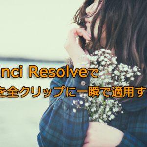 DaVinci ResolveでLUTを全クリップに一瞬で適用する方法